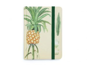 Caderno Abacaxi